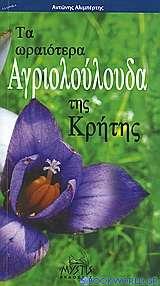 Τα ωραιότερα αγριολούλουδα της Κρήτης