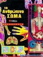 Το ανθρώπινο σώμα