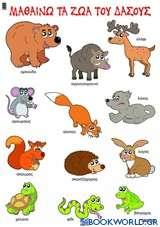 Μαθαίνω τα ζώα του δάσους