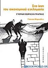 Στα ίχνη του οικονομικού εγκληματία