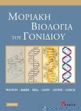 Μοριακή βιολογία του γονιδίου