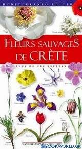Fleurs sauvages de Crète