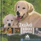 Σκυλιά [1001] photos
