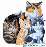 Γατάκια ζωηρά