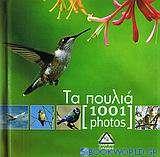 Τα πουλιά [1001 photos]