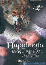 Η προδοσία ενός γκρίζου λύκου