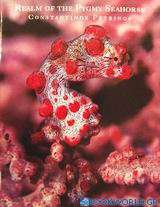 Realm of the Pygmy Seahorse